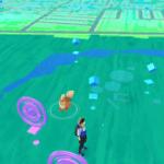 ポケモンGO ガーディの巣花園中央公園