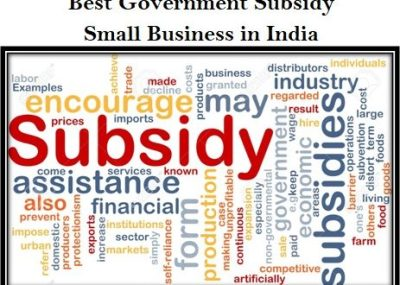 Best Government Subsidy For Small Business in India - Startup Business Idea