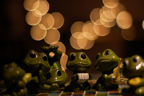 frogs party