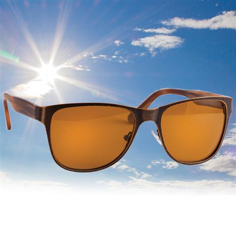 Scienza Mens Wayfarer Sunglasses (dark brown)