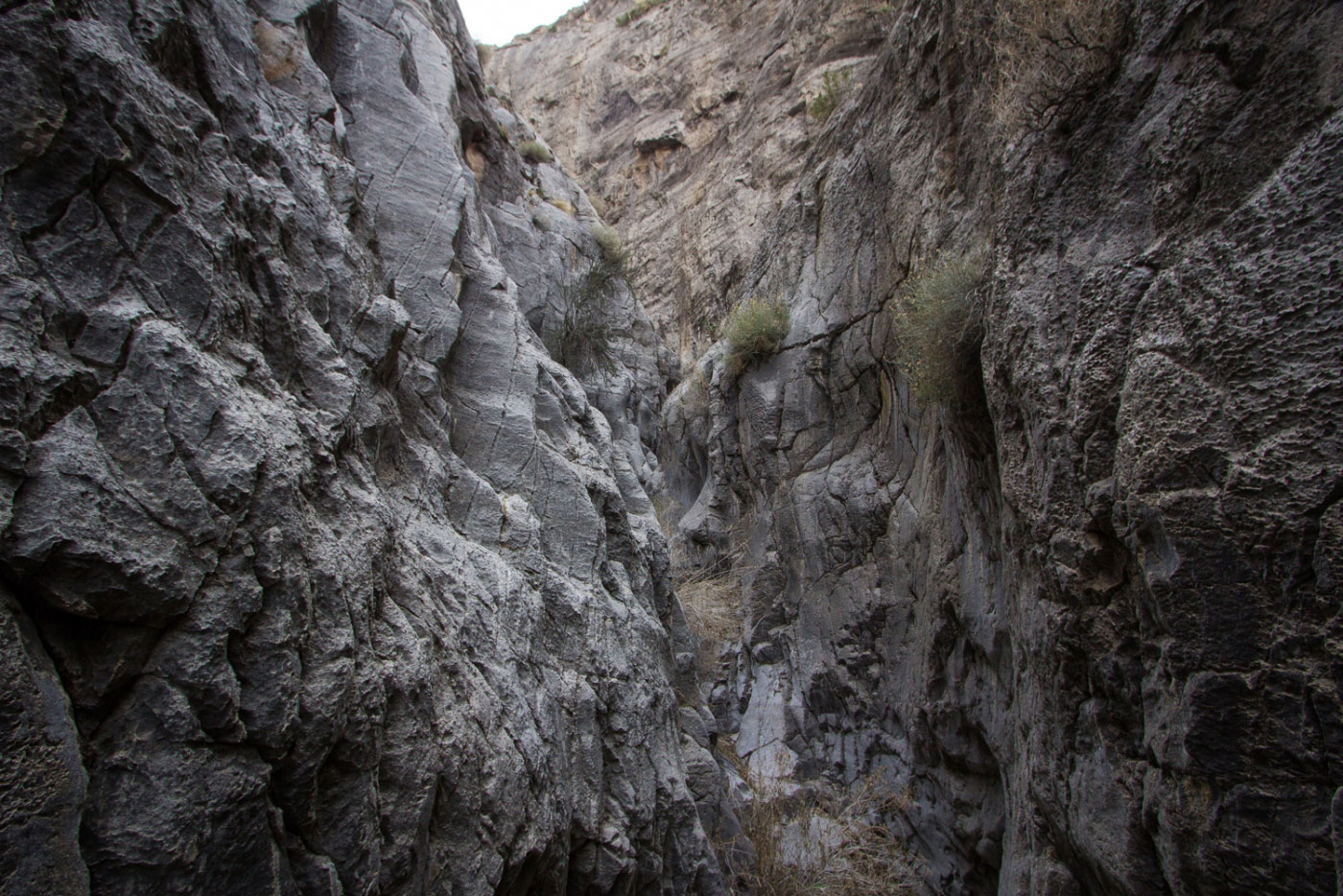 Canyoneering Turtle Tears And Ladder Of Doom Canyons In