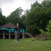 Fruška Gora: 4 manastira i Stražilovo (37km)