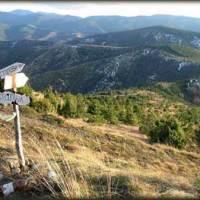 Stolovi - Narcisu u pohode (51km)