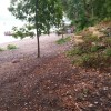 Stabilizing the St. Croix River Bluff in Lakeland