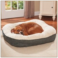 dr fosters dog beds drs foster and smith dog beds alluring ...