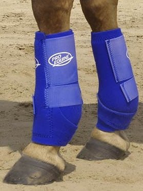 Pro Equine Splints And Boots For The Working Horse At