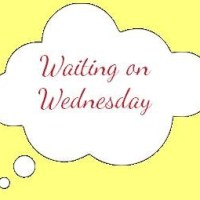 Waiting on Wednesday - Melanie Raabe: Die Falle