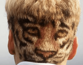 Stefan Effenberg mit Tiger-Frisur