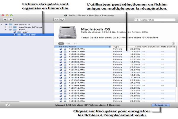 Create Resume Mac Professional resumes sample online