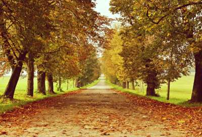 When is First Day of fall in 2018? Autumn Equinox Explained - Stemjar
