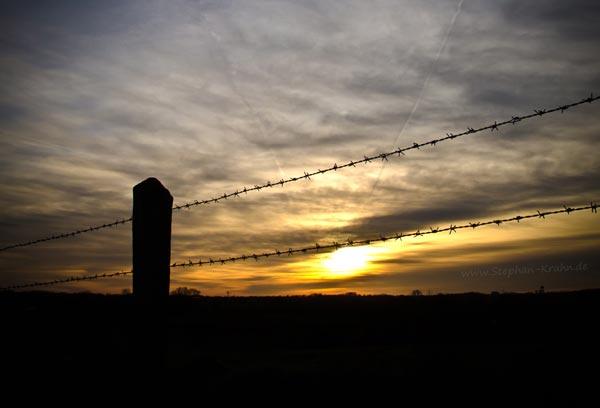 Stacheldraht im Sonnenuntergang