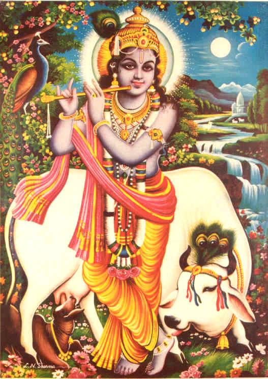 Cute Lord Krishna Hd Wallpaper Krishna Print Eighty One