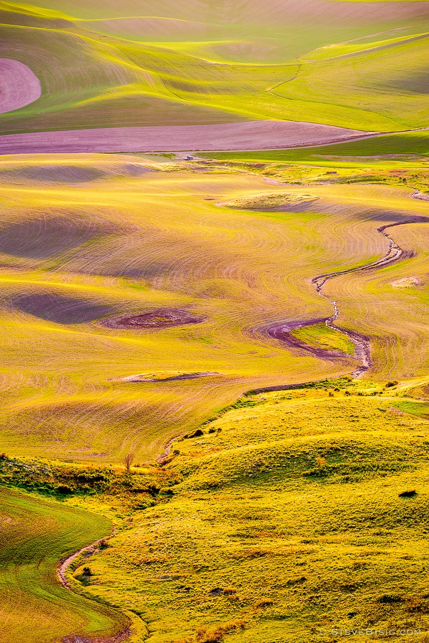 Evening on the Palouse No. 17, Steptoe Butte, Washington, 2014