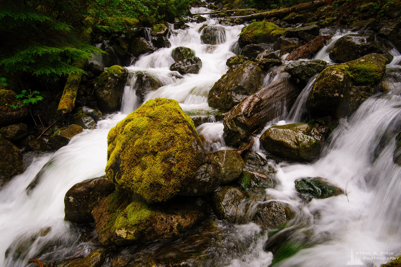 Change Creek, King County, Washington, 2014