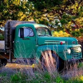Ford F6 Flatbed Farm Truck, Kittitas County, Washington, 2011