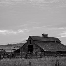 Old Barn, McManamy Road, Ellensburg, Washington, 2011