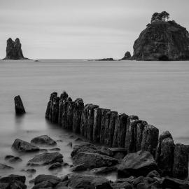Old Pilings, La Push, Washington, 2013