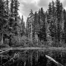 Unknown Lake, Mount Rainier National Park, Washington, 2014