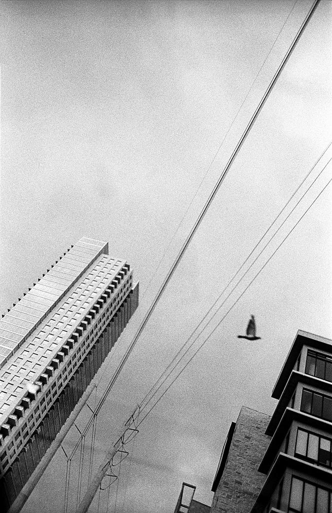 Tokyo Drift - SMC-31mm 1.8