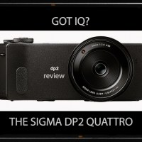 Got IQ? The Sigma DP2 Quattro Review.