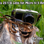 Holga 25 f/8 Lens for Micro 4/3 review by Illya Reddy