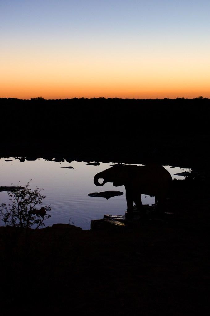 05 Mai The silhouette