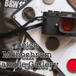 The Leica Monochrom Sample Image Gallery, updated every week!