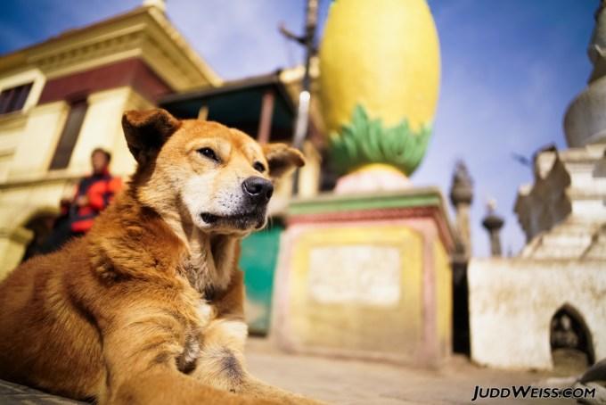 nepal-2015-1008