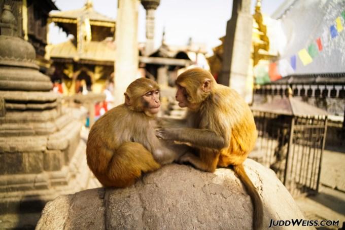 nepal-2015-1016
