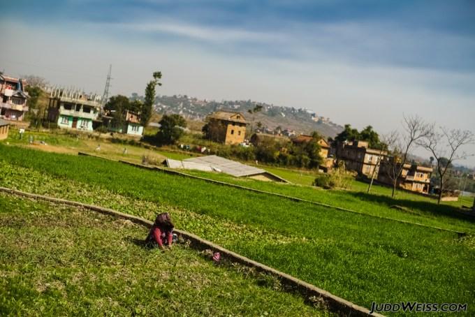 nepal-2015-1033