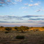 Shooting in Namibia by Hilmar Buch