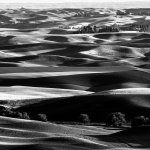 The Palouse in Monochrome. A journey into luminance and splendor….by Ashwin Rao