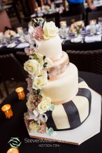 Wedding Grapher Palm Beach