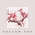 Monitor 66 - Follow You