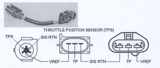 Ford Tps Wiring Diagram Onlinerh121317philoxeniarestaurantde: Ford Ranger Throttle Position Sensor Wiring Diagram At Gmaili.net