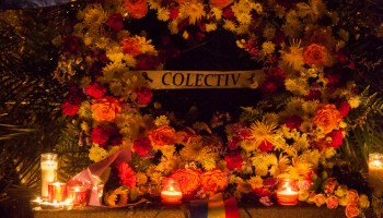 Colectiv_Montreal-15