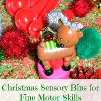 Christmas Sensory Bins for Fine Motor Skills