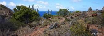 Ram's Head Trail