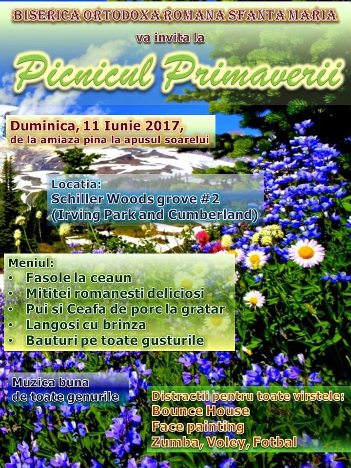 picnic-2017