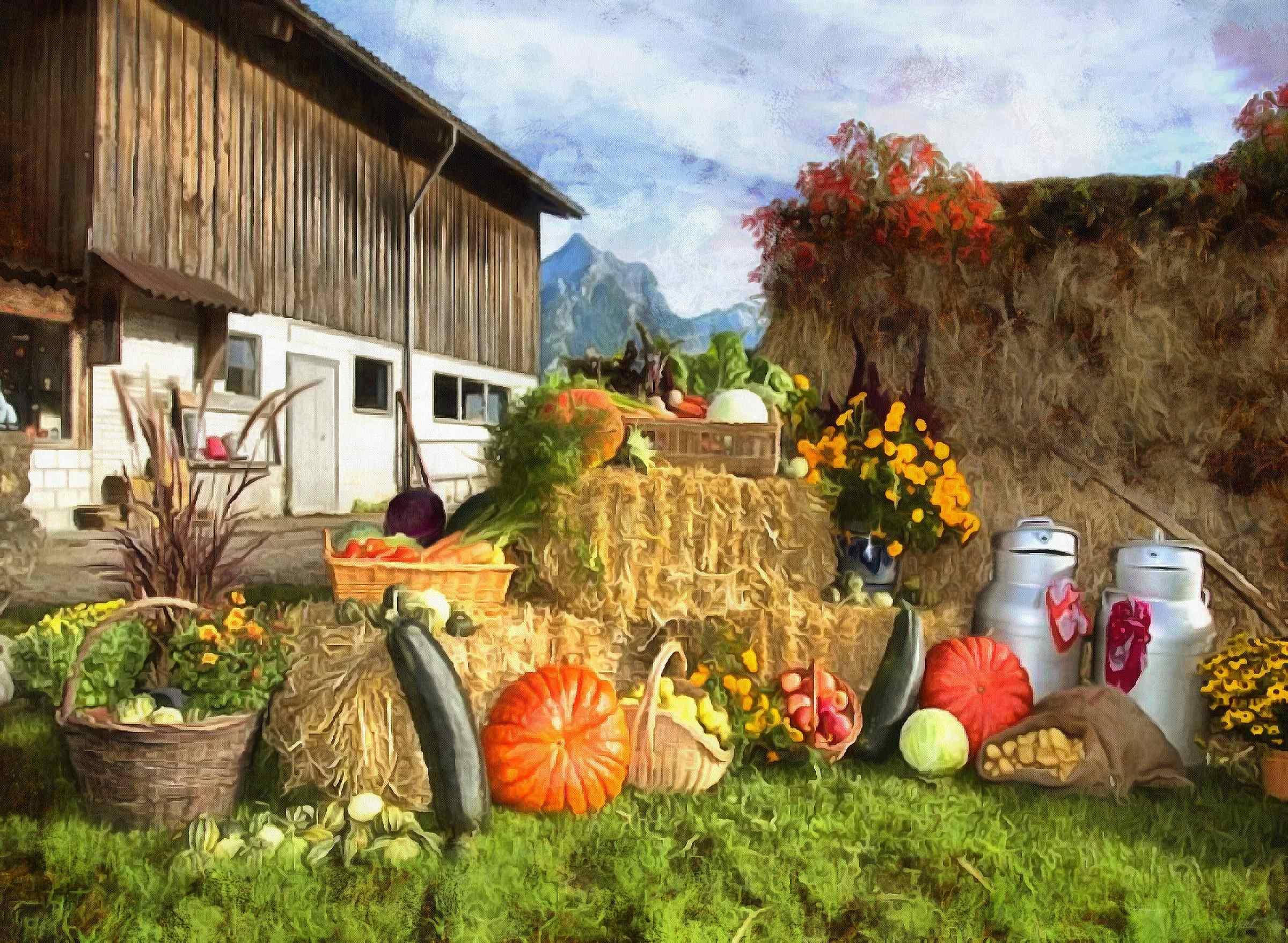 Hd Autumn Desktop Wallpaper Harvest Farm Harvest Plenty Of Vegetables