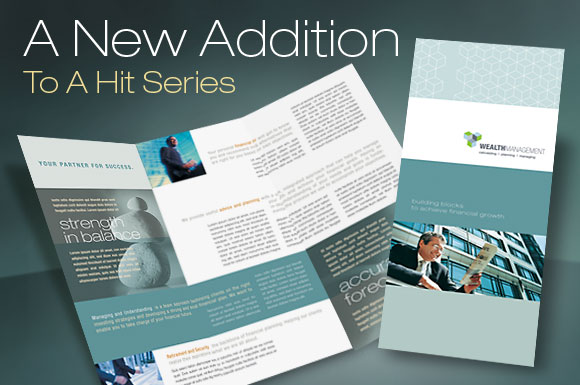Tri Fold Brochure Template for a Financial Service Company - services brochure