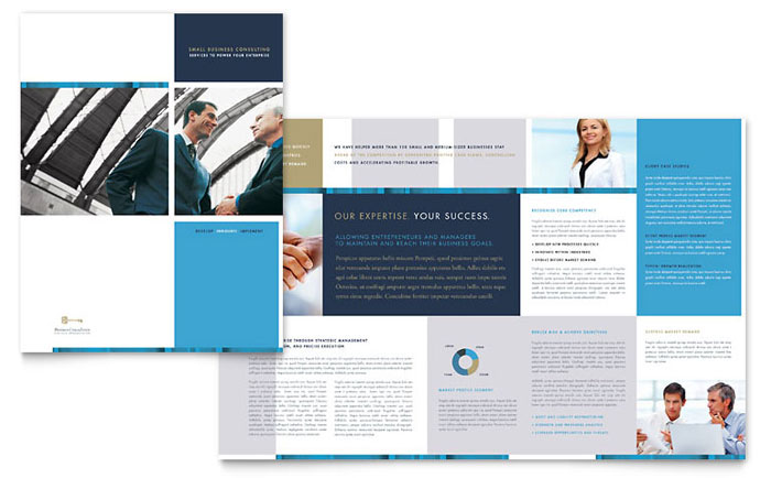 Company Profile Red Pony Small Business Consulting Brochure Template Design