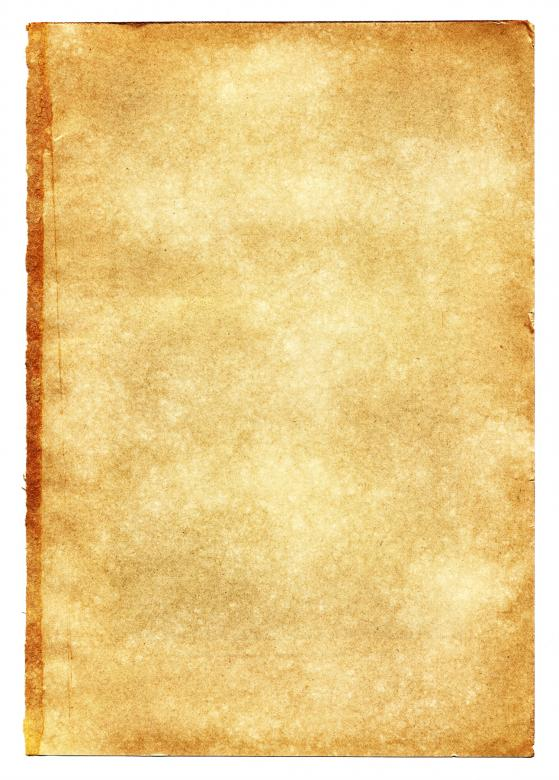old journal template - Onwebioinnovate - diary paper template