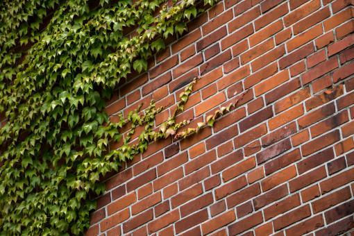Neighborhood watch website templates - 2018 - neighborhood website templates