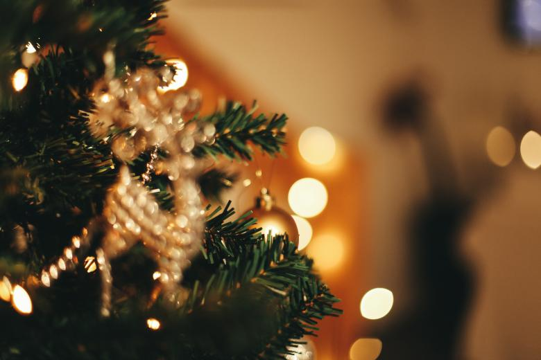 Christmas Tree Background - Free Stock Photo by Bjorgvin Gudmundsson