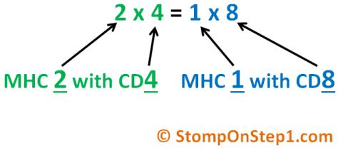 Mnemonic CD8 CD4 MHC 1 2 MHC I II T Cell