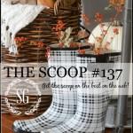 THE SCOOP # 137