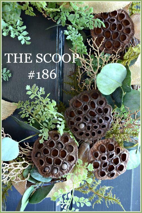the scoop #186-stonegableblog.com