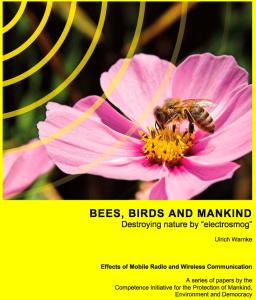 Bees, Birds & Mankind