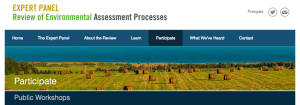 review-of-environmental-assessment-processes
